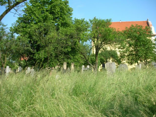 Straznice cemetery before grass was cut June 2008.JPG