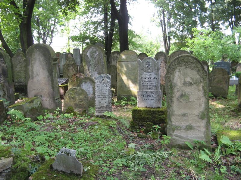 Bochnia-cemetery-10-7-11-131.JPG