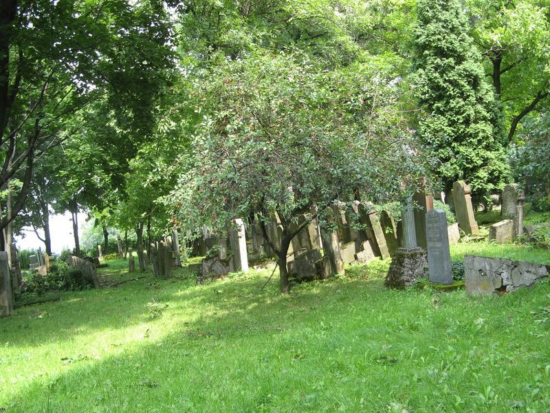 Bochnia-cemetery-10-7-11-203.JPG
