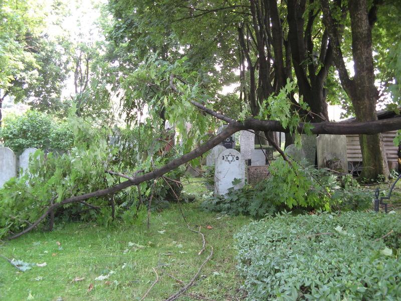 Bochnia-cemetery-10-7-11-30.JPG