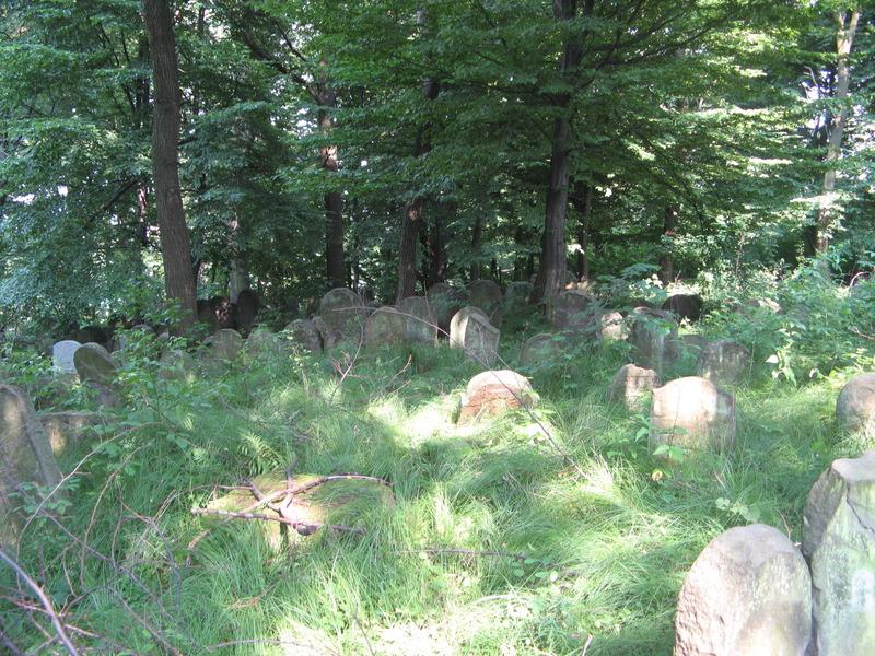 N-Vicnic-cemetery-10-7-11-4.JPG