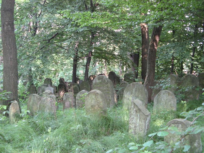 Novy-Vizhnitz-cemetery-10-7-11-100.JPG