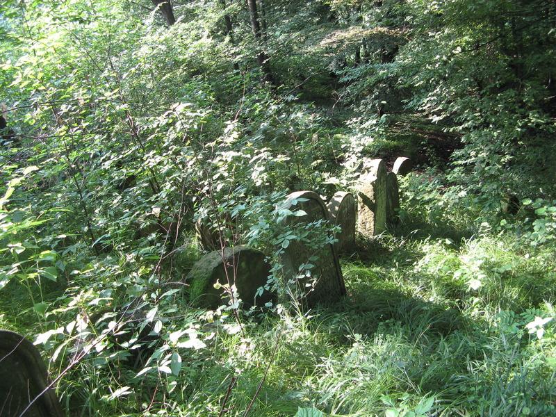Novy-Vizhnitz-cemetery-10-7-11-106.JPG