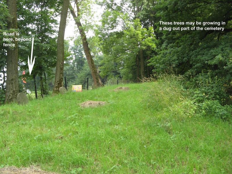 Novy-Vizhnitz-cemetery-10-7-11-15a.jpg