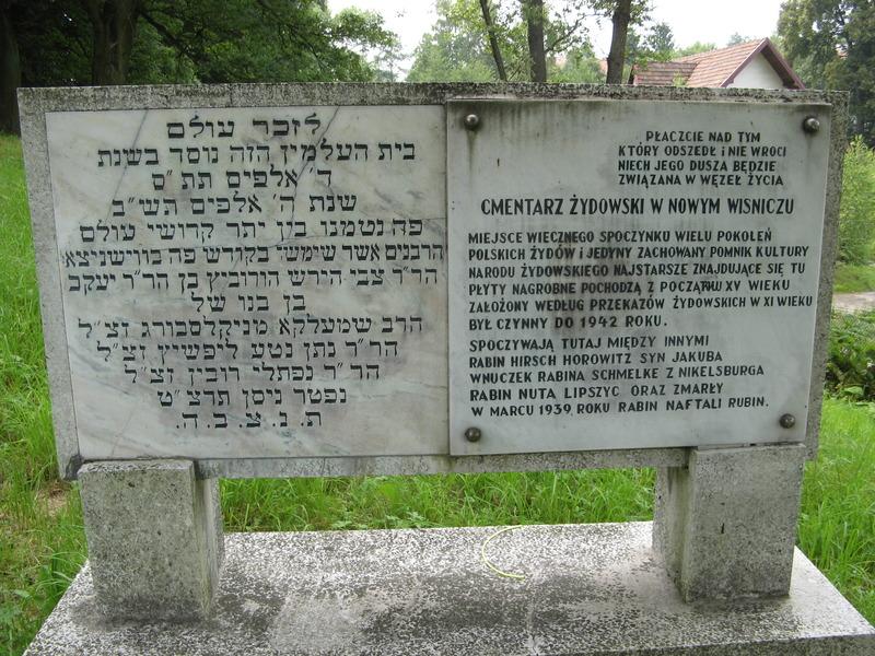 Novy-Vizhnitz-cemetery-10-7-11-16.JPG