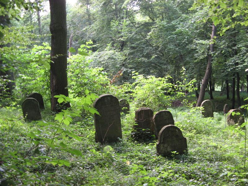 Novy-Vizhnitz-cemetery-10-7-11-179.JPG