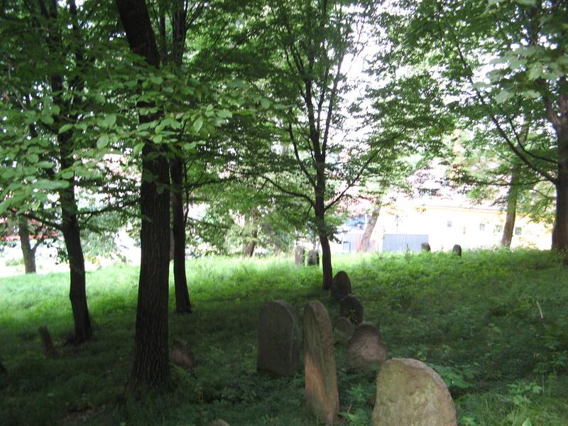 Novy-Vizhnitz-cemetery-10-7-11-182.JPG