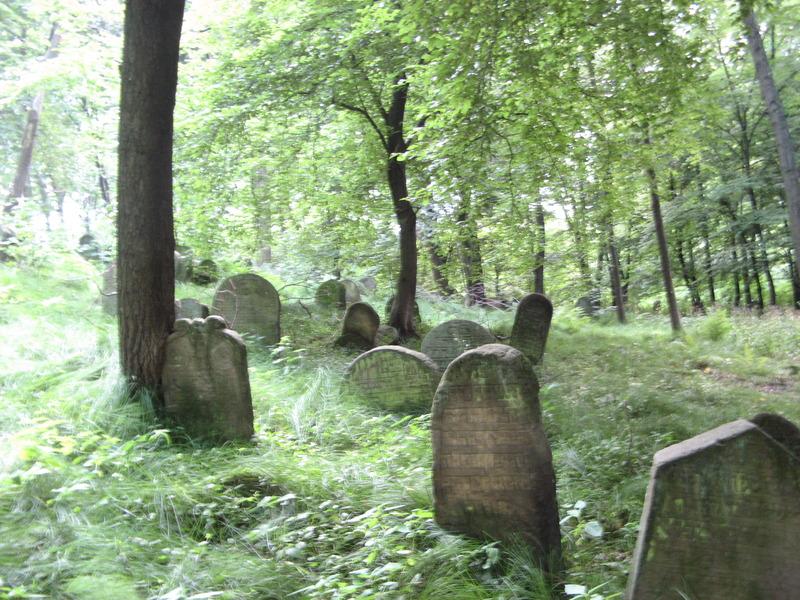 Novy-Vizhnitz-cemetery-10-7-11-187.JPG
