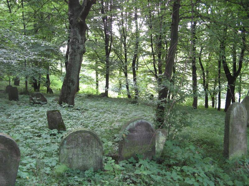 Novy-Vizhnitz-cemetery-10-7-11-192.JPG