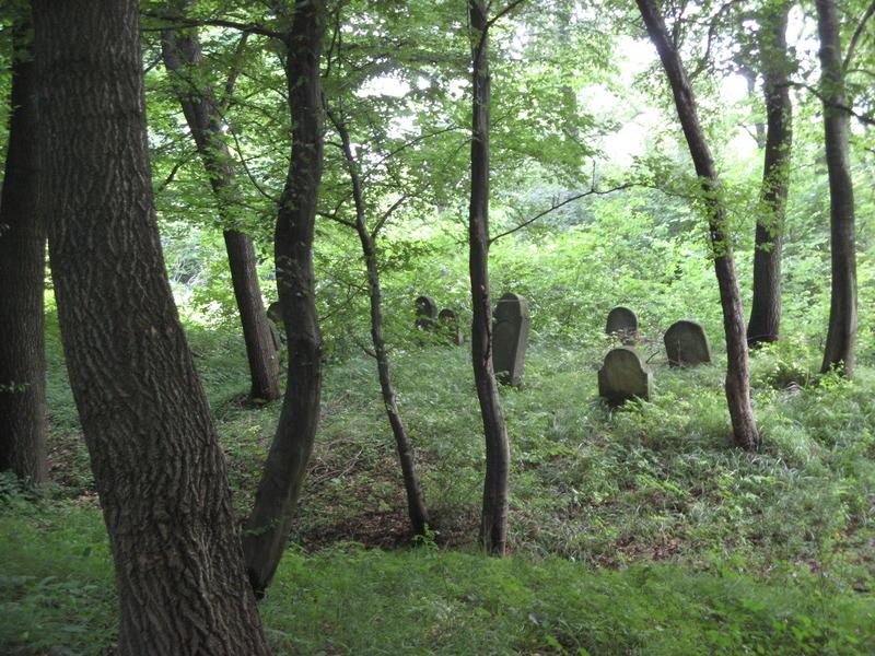 Novy-Vizhnitz-cemetery-10-7-11-199.JPG