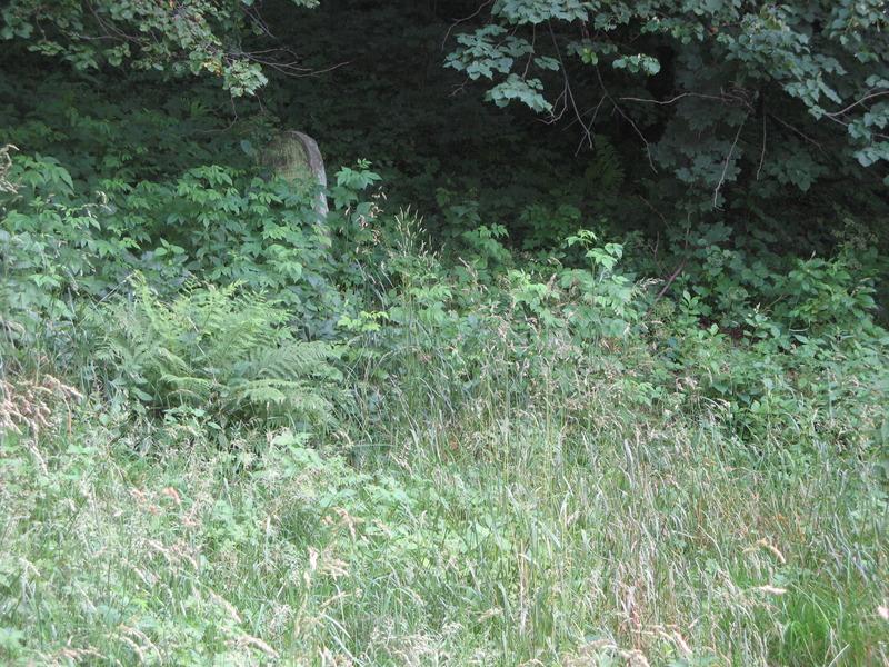 Novy-Vizhnitz-cemetery-10-7-11-204.JPG