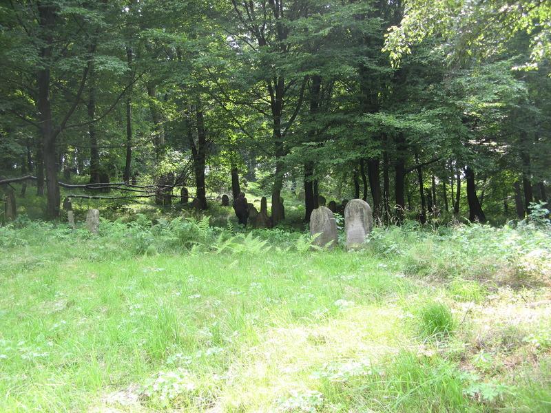 Novy-Vizhnitz-cemetery-10-7-11-23.JPG