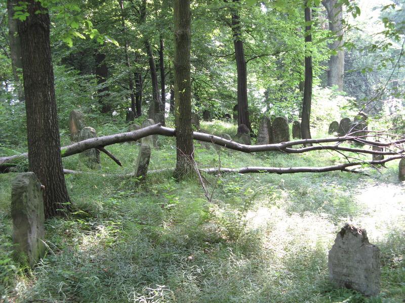 Novy-Vizhnitz-cemetery-10-7-11-28.JPG
