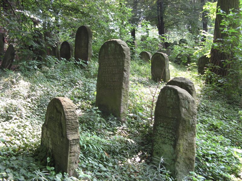 Novy-Vizhnitz-cemetery-10-7-11-44.JPG