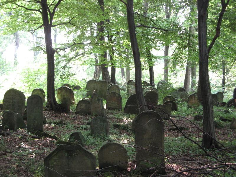 Novy-Vizhnitz-cemetery-10-7-11-56.JPG