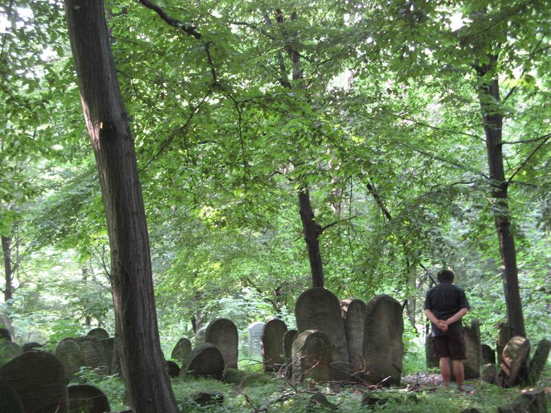 Novy-Vizhnitz-cemetery-10-7-11-64.JPG