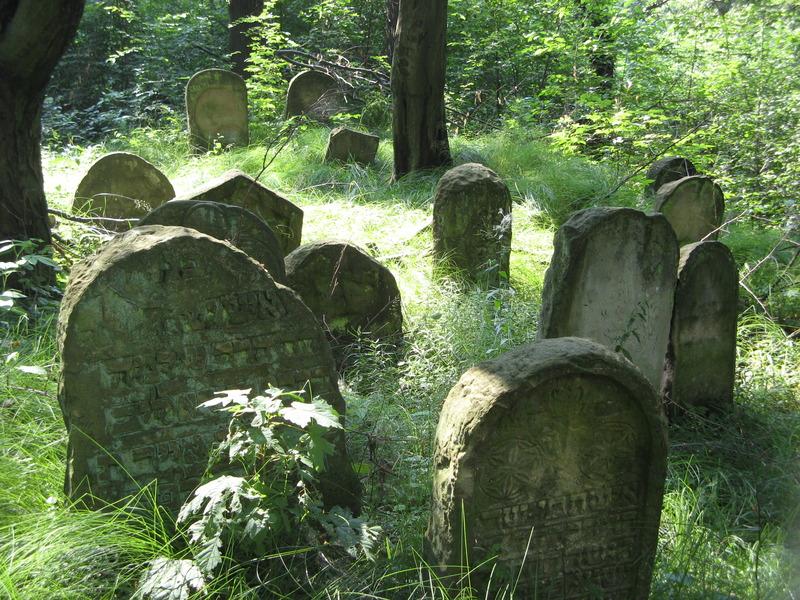 Novy-Vizhnitz-cemetery-10-7-11-98.JPG