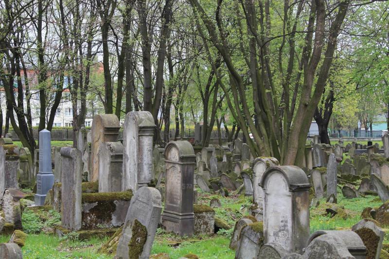 Cemetery-pre-cleanup.jpg