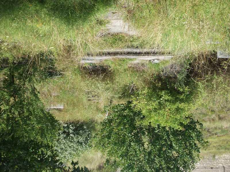 Holic_Cemetery_203s.JPG