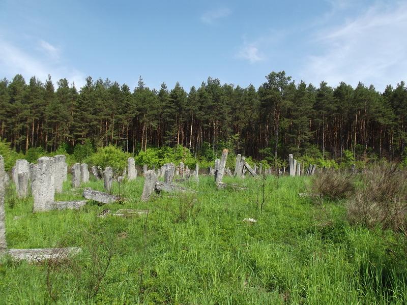 5-Brody-5-2012-Jewish-cemetery-35.jpg