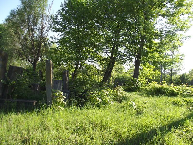 Tarnopol,Jewish-cemetery,5-2012-06.jpg