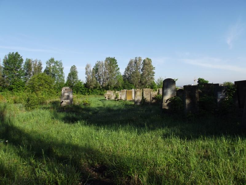 Tarnopol,Jewish-cemetery,5-2012-07.jpg