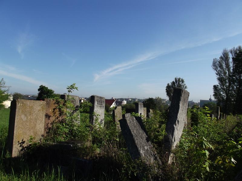 Tarnopol,Jewish-cemetery,5-2012-14.jpg