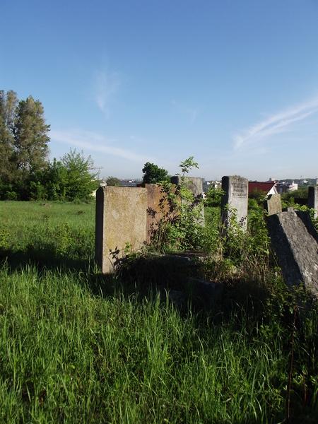 Tarnopol,Jewish-cemetery,5-2012-16.jpg