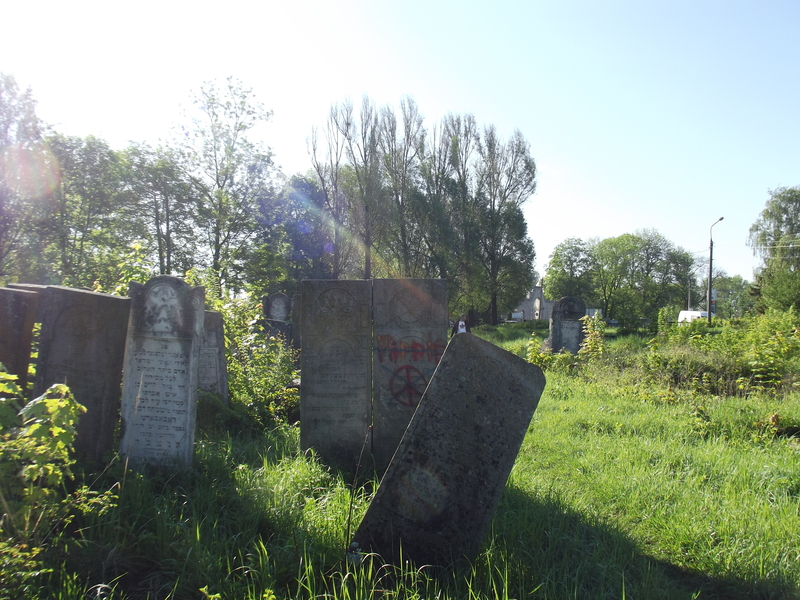 Tarnopol,Jewish-cemetery,5-2012-17.jpg