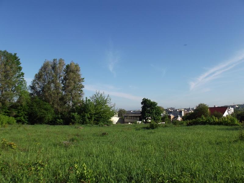 Tarnopol,Jewish-cemetery,5-2012-18.jpg