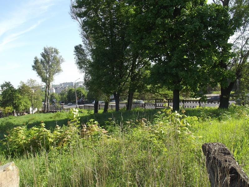 Tarnopol,Jewish-cemetery,5-2012-22.jpg