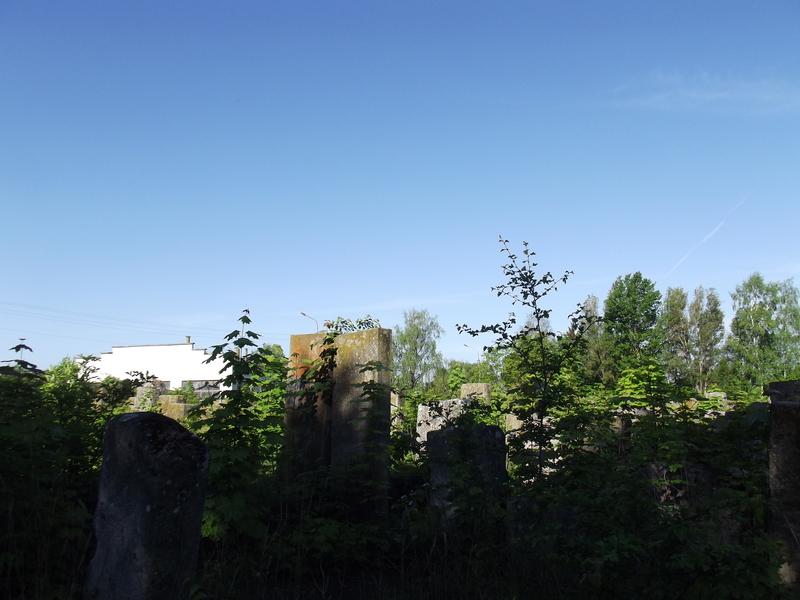 Tarnopol,Jewish-cemetery,5-2012-25.jpg