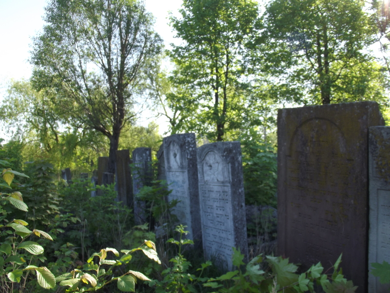 Tarnopol,Jewish-cemetery,5-2012-26.jpg