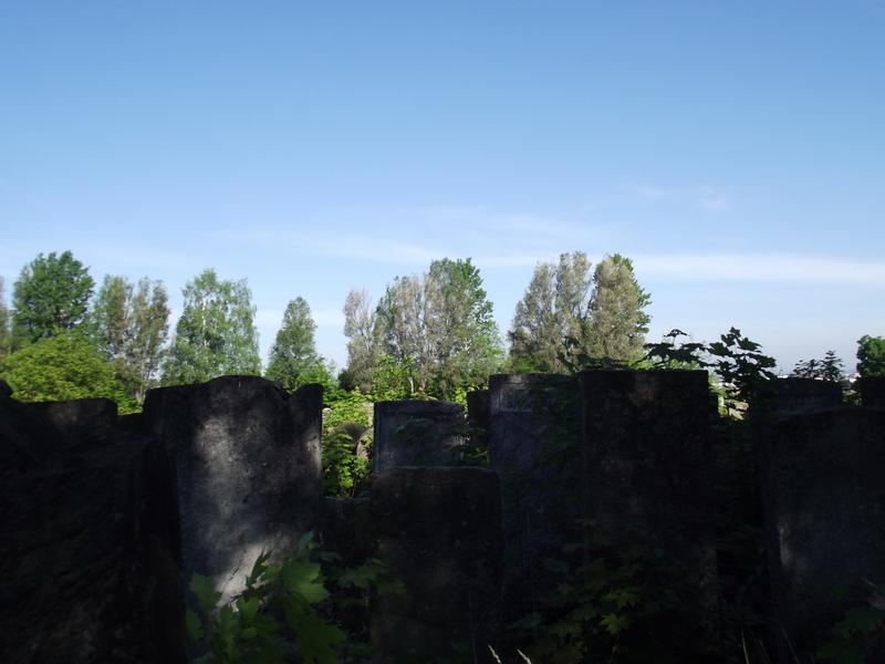 Tarnopol,Jewish-cemetery,5-2012-28.jpg
