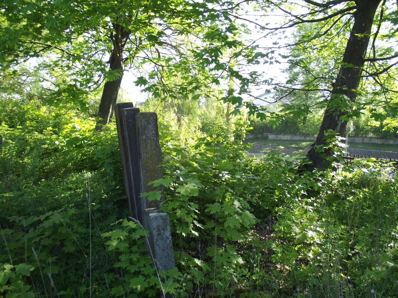 Tarnopol,Jewish-cemetery,5-2012-29.jpg