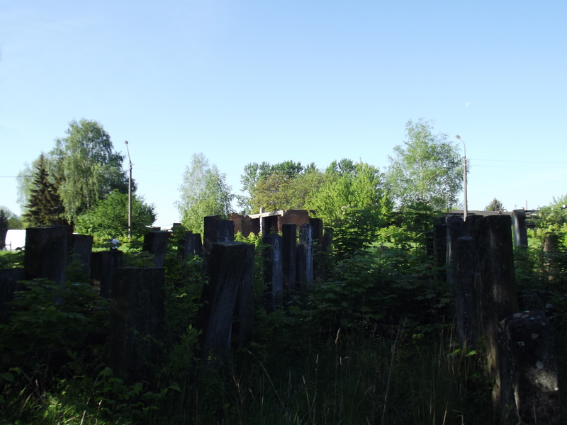 Tarnopol,Jewish-cemetery,5-2012-33.jpg