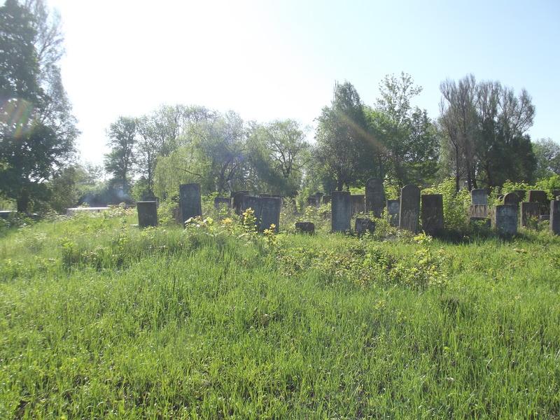 Tarnopol,Jewish-cemetery,5-2012-34.jpg