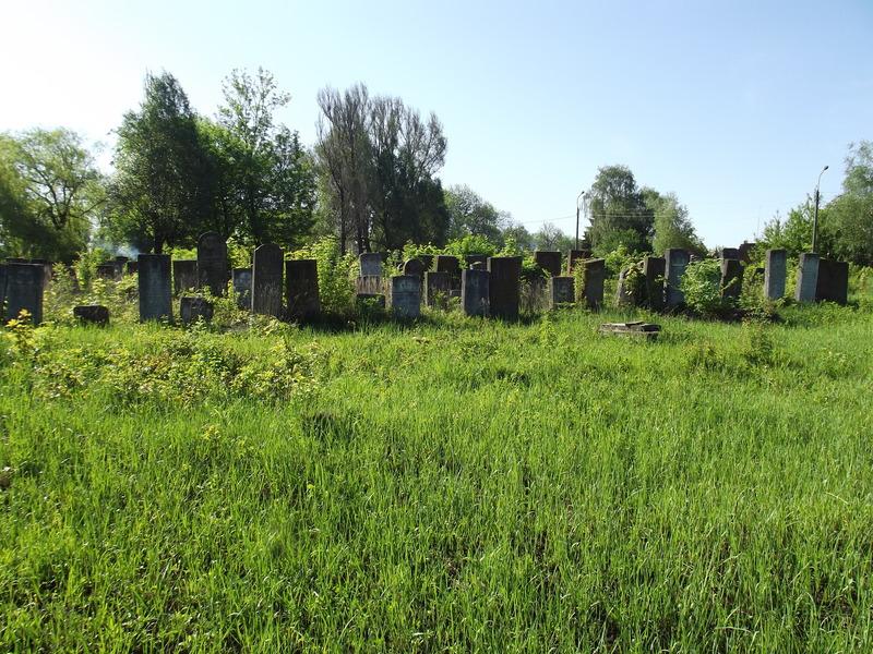 Tarnopol,Jewish-cemetery,5-2012-35.jpg