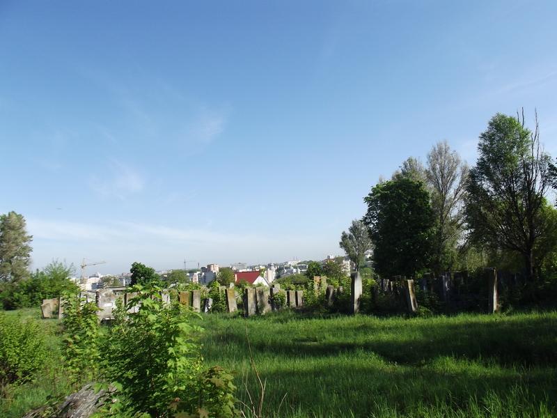 Tarnopol,Jewish-cemetery,5-2012-40.jpg