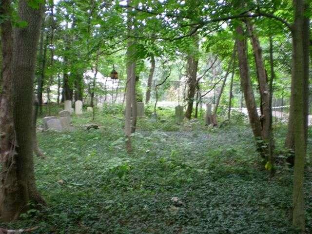 philadelphia-gladwyne_jewish_cemetery_5.jpg